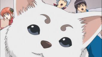 Episode 1: You Guys!! Do You Even Have a Gintama?